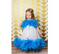 Design Your Own Dream Tulle Feather Dress
