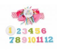 Monthly Milestone Headband month birth birthday